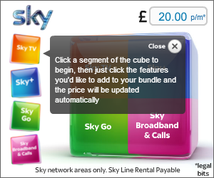 Sky widget1